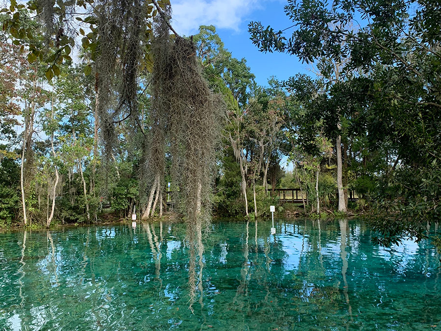 Things to do in Crystal River Florida 3 Sisters